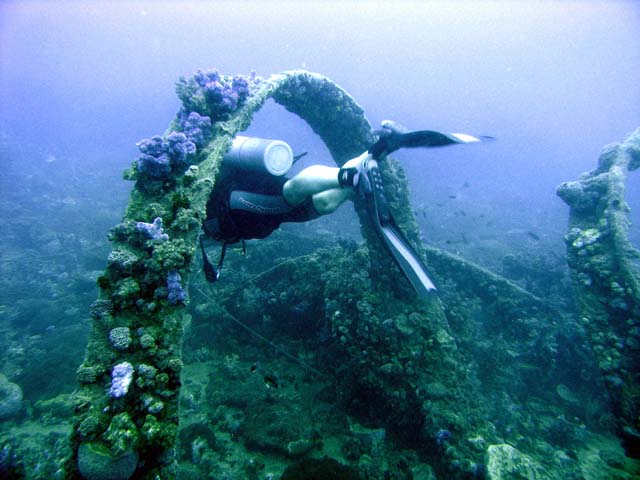 Anambas Island http://www.colours.dk/anders/diving/wrecks/igara/igara.html